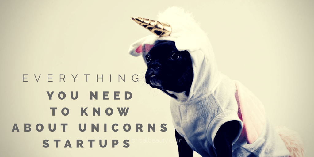 Aaron Vick - Everything You Need to Know About Unicorn Startups